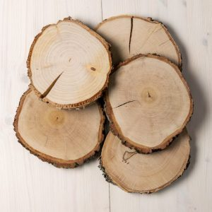 Natural-round-wood-slices-table-placements-natural-rounds-510x510